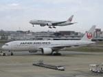 F.KAITOさんが、福岡空港で撮影した日本航空 777-246の航空フォト(写真)