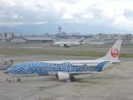 F.KAITOさんが、福岡空港で撮影した日本トランスオーシャン航空 737-4Q3の航空フォト(写真)