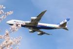 まえちんさんが、成田国際空港で撮影した日本貨物航空 747-8KZF/SCDの航空フォト(写真)