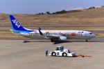 はるかのパパさんが、福島空港で撮影した全日空 737-881の航空フォト(写真)