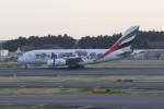 サリーちゃんのパパさんが、成田国際空港で撮影したエミレーツ航空 A380-861の航空フォト(写真)