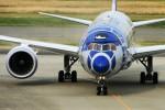 Spot KEIHINさんが、羽田空港で撮影した全日空 787-9の航空フォト(写真)