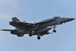 ばとさんが、厚木飛行場で撮影したアメリカ海軍 F/A-18E Super Hornetの航空フォト(写真)