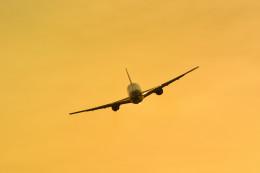 kaz787さんが、伊丹空港で撮影した日本航空 767-346/ERの航空フォト(写真)