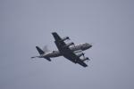 JA8037さんが、厚木飛行場で撮影した海上自衛隊 UP-3Cの航空フォト(写真)