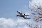 poppoya-makochanさんが、成田国際空港で撮影した全日空 787-9の航空フォト(写真)