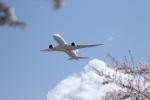 poppoya-makochanさんが、成田国際空港で撮影した日本航空 787-846の航空フォト(写真)