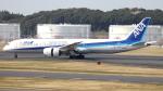 誘喜さんが、成田国際空港で撮影した全日空 787-9の航空フォト(写真)