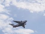 ガスパールさんが、岐阜基地で撮影した---の航空フォト(写真)