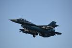 ja0hleさんが、岐阜基地で撮影した航空自衛隊 F-2Aの航空フォト(写真)