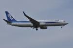 qooさんが、成田国際空港で撮影した全日空 737-881の航空フォト(写真)