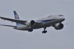 qooさんが、成田国際空港で撮影した全日空 787-881の航空フォト(写真)