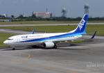 NINEJETSさんが、宮古空港で撮影した全日空 737-881の航空フォト(写真)