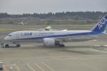 fukucyanさんが、成田国際空港で撮影した全日空 787-881の航空フォト(写真)