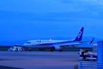 門ミフさんが、佐賀空港で撮影した全日空 737-881の航空フォト(写真)