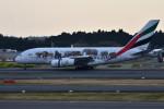 turenoアカクロさんが、成田国際空港で撮影したエミレーツ航空 A380-861の航空フォト(写真)