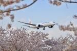 kingmengraiさんが、成田国際空港で撮影した日本航空 787-9の航空フォト(写真)