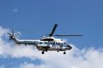 ハム太郎さんが、羽田空港で撮影した海上保安庁 AS332L1 Super Pumaの航空フォト(写真)