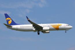 安芸あすかさんが、成田国際空港で撮影したMIATモンゴル航空 737-8SHの航空フォト(写真)