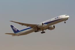 Koenig117さんが、成田国際空港で撮影した全日空 777-381/ERの航空フォト(写真)