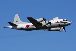 Flankerさんが、厚木飛行場で撮影した海上自衛隊 UP-3Cの航空フォト(写真)