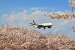 kingmengraiさんが、成田国際空港で撮影したデルタ航空 777-232/LRの航空フォト(写真)