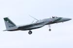 isiさんが、茨城空港で撮影した航空自衛隊 F-15J Eagleの航空フォト(写真)