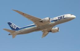 Koenig117さんが、成田国際空港で撮影した全日空 787-881の航空フォト(写真)