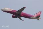 RINA-200さんが、関西国際空港で撮影したピーチ A320-214の航空フォト(写真)