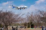 ken_kenさんが、成田国際空港で撮影した全日空 787-881の航空フォト(写真)