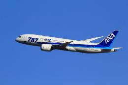 もっちみずさんが、小松空港で撮影した全日空 787-881の航空フォト(写真)