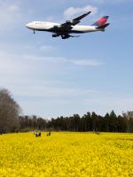 Mame @ TYOさんが、成田国際空港で撮影したデルタ航空 747-451の航空フォト(写真)