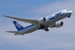 ceskykrumlovさんが、成田国際空港で撮影した全日空 787-881の航空フォト(写真)