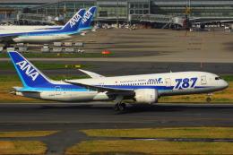 KoshiTomo✈さんが、羽田空港で撮影した全日空 787-881の航空フォト(写真)