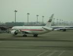 pringlesさんが、羽田空港で撮影したアミリ フライト 787-9の航空フォト(写真)