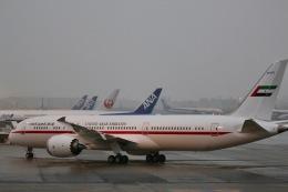 ふくそうじさんが、羽田空港で撮影したアミリ フライト 787-9の航空フォト(写真)