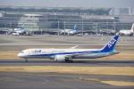 JA8037さんが、羽田空港で撮影した全日空 787-9の航空フォト(写真)