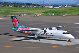 hirohiro77さんが、札幌飛行場で撮影したエアーニッポンネットワーク DHC-8-314Q Dash 8の航空フォト(写真)