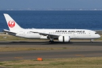 Wings Flapさんが、中部国際空港で撮影した日本航空 787-8 Dreamlinerの航空フォト(写真)