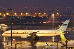 camelliaさんが、羽田空港で撮影したアミリ フライト 787-9の航空フォト(写真)