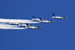FREEDOM SKYさんが、熊本空港で撮影した航空自衛隊 T-4の航空フォト(写真)