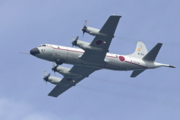 senyoさんが、三浦湾上空で撮影した海上自衛隊 UP-3Cの航空フォト(写真)