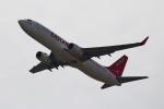 reonさんが、関西国際空港で撮影したイースター航空 737-86Jの航空フォト(写真)