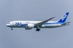 Y-Kenzoさんが、成田国際空港で撮影した全日空 787-881の航空フォト(写真)