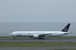 KENKEN25さんが、羽田空港で撮影した全日空 777-381/ERの航空フォト(写真)