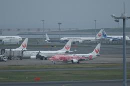 KENKEN25さんが、羽田空港で撮影した日本トランスオーシャン航空 737-446の航空フォト(写真)