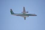 いっとくさんが、伊丹空港で撮影したANAウイングス DHC-8-402Q Dash 8の航空フォト(写真)