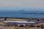 ルビーさんが、羽田空港で撮影した航空自衛隊 747-47Cの航空フォト(写真)