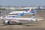 安芸あすかさんが、羽田空港で撮影したアミリ フライト 787-9の航空フォト(写真)