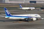 tombowさんが、羽田空港で撮影した全日空 787-9の航空フォト(写真)